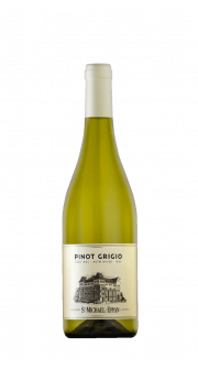 Pinot Grigio DOC