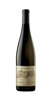 Pinot Bianco Schulthauser DOC